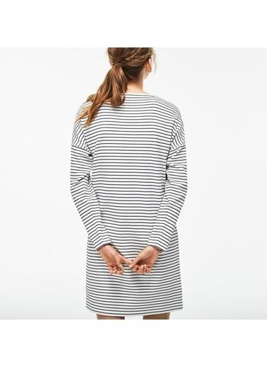 Lacoste Kadın Çizgili Elbise EF8812.EV0 Beyaz